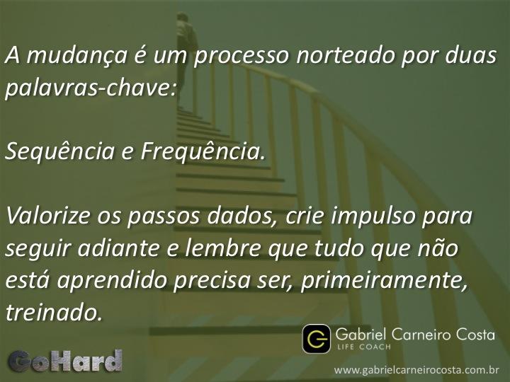 Denise Mineiro - Sequência e Frequência
